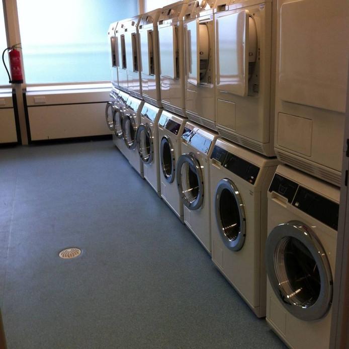 Wasmachines, drogers, koelkasten: ze zijn er in veelvoud.