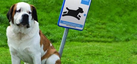 Oud Gastel en Oudenbosch krijgen losloopgebieden voor honden