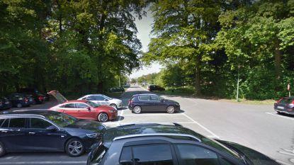 Extra parkeerplaatsen langs toegangsdreef Interbad