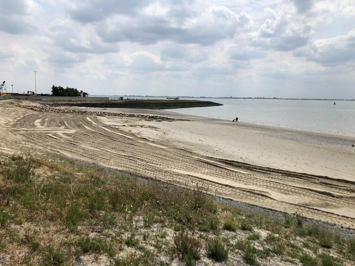 Het strandje van Hansweert na de opknapbeurt.