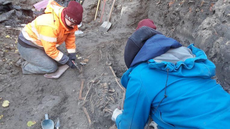 Alle skeletten en beenderen worden manueel opgegraven