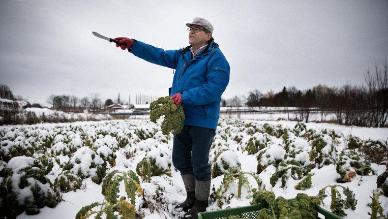 Staand in zijn boerenkoolveld wijst Sepp Dürr, Groene afgevaardigde in de Beierse landdag, op een konijn. 'Je moet niet overal bedrijventerreinen willen neerplempen.' Beeld Daniel Rosenthal / de Volkskrant