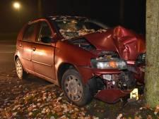 Auto botst in dichte mist tegen boom, bestuurder gewond