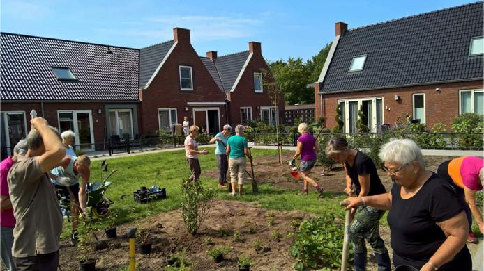 Bewoners van de Aahof in Zwolle aan het werk in de gezamenlijke tuin van het eerste knarrenhof in Nederland.