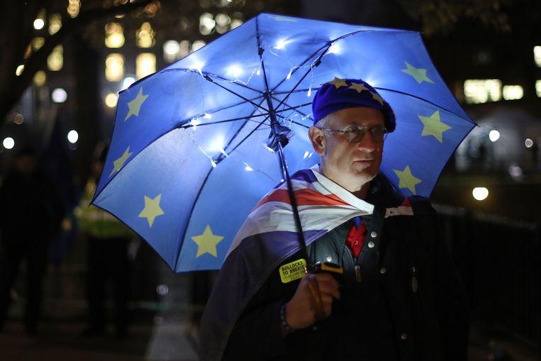 Een pro-EU-aanhanger staat buiten bij het parlementsgebouw in Londen, 14 januari 2019. Beeld AFP