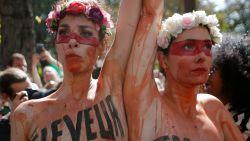 Wereldleiders in de bres voor Amazonewoud
