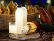 Dit heerlijke sap verdwijnt jammerlijk in de grond bij de cacaoteelt