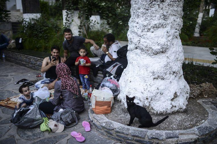 Vluchtelingen op Kos in een park. Beeld afp