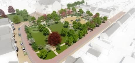Werkgroep Willem-Alexanderplein: 'Park gaat pas leven als bewoners zelf schouders eronder zetten'