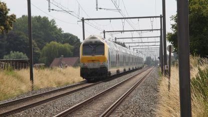 Marianne Verhaert (Open-Vld) pleit voor beter mobiel datawerk op treinstellen