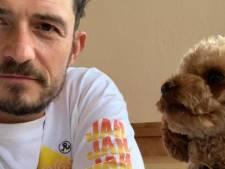 Orlando Bloom dévoile un nouveau tatouage en hommage à son chien