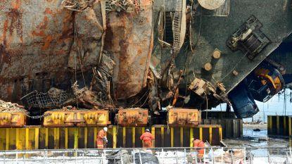 Dierlijke resten gevonden in wrak van Zuid-Koreaanse veerboot
