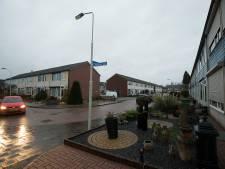 Plavei en gemeente investeren ruim 30 miljoen in Bloemenbuurt Didam