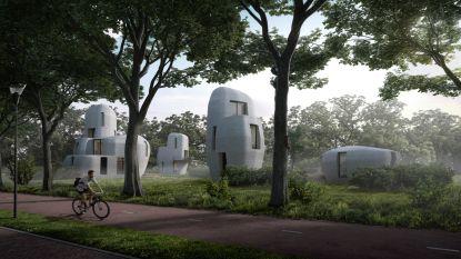 Wereldprimeur in Eindhoven: eerste 3D-geprinte woningen