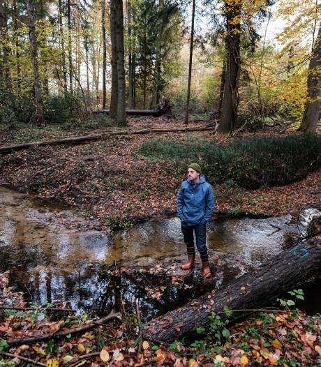 Omgevallen bomen in Ratumse beek tegen verdroging