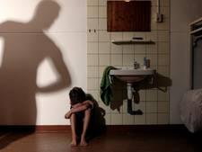 OM eist 2,5 jaar tegen Epenaar voor incest met stiefdochter