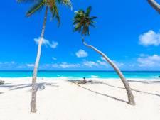 Buitenkans: nu aanmelden voor een jaar 'thuiswerken' op Barbados