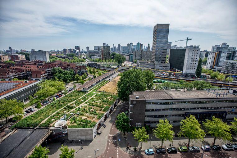 Het Luchtpark Hofbogen op het dak van het voormalig station Hofplein. De originele perronoverkapping staat er nog. Linksonder begint het 1,9 kilometer lange spoortraject. Beeld Raymond Rutting / de Volkskrant
