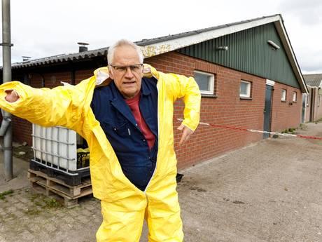 Kippen kunnen naar buiten, pluimveehouders opgelucht
