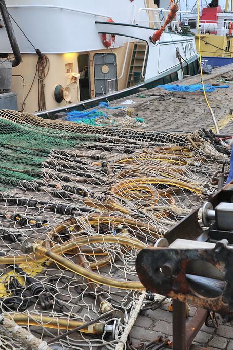 Nog is niet alles verloren voor pulsvissers