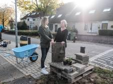 Subsidie bij het vergroenen van je Nijmeegse tuin, maar je weet niet hoe? De Bastei biedt hulp