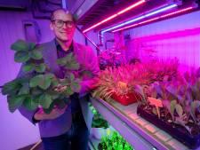 Prinsentuin Breda wil af negatief imago land- en tuinbouwsector