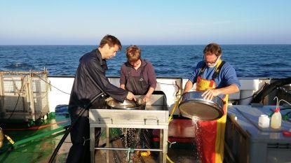 Odisee-docent voert onderzoek op marineschip Belgica