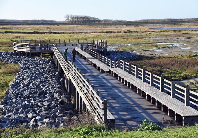 Vlonder in uitbreiding van natuurgebied Het Zwin, bij vloed moet die straks in het water staan.