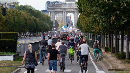 """""""Tot 70% minder stikstof en dieselroet bij autovrije zondag Brussel"""""""