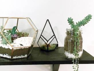 Doe-het-zelf: deze dure geometrische vormen maak je makkelijk zelf