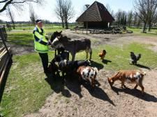 Frans Knippels had zijn hart verpand aan de dieren in het parkje in Drunen
