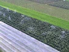 Slechts enkeling betrapt op negeren van sproeiverbod in Rivierenland