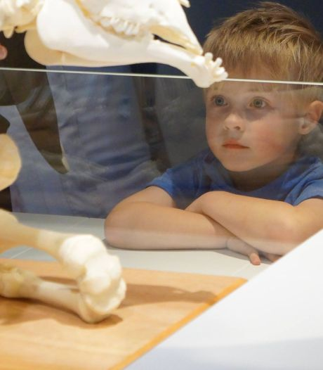 Museum Natura Docet Denekamp meest kidsproof van Overijssel