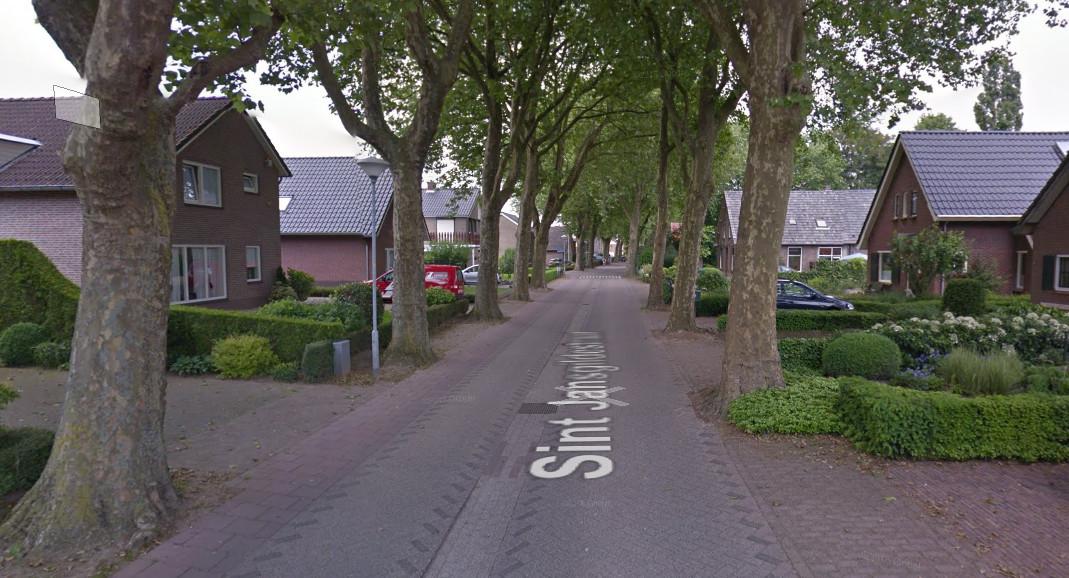 De  platanen aan de Sint Jansgildestraat in Beek.