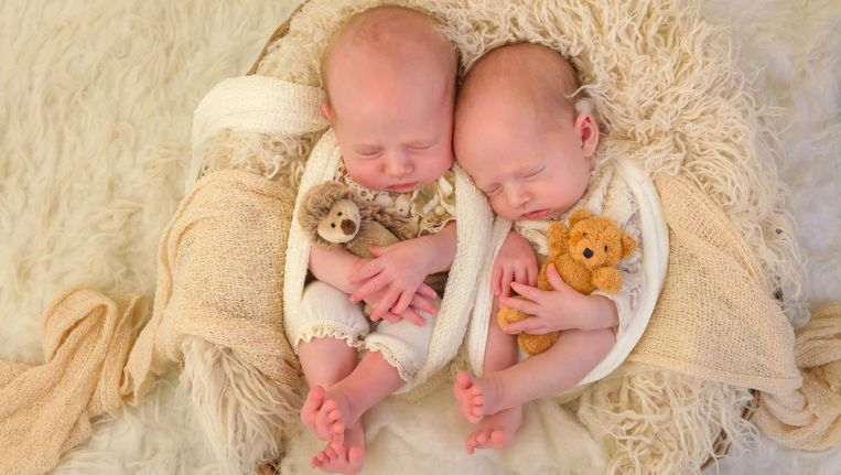 Tweeling Kan Volgens Onderzoek Het Best Geboren Worden In