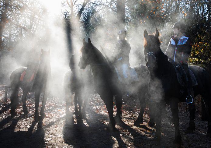 Paardrijders in de Maashorst, op een herfstochtend.
