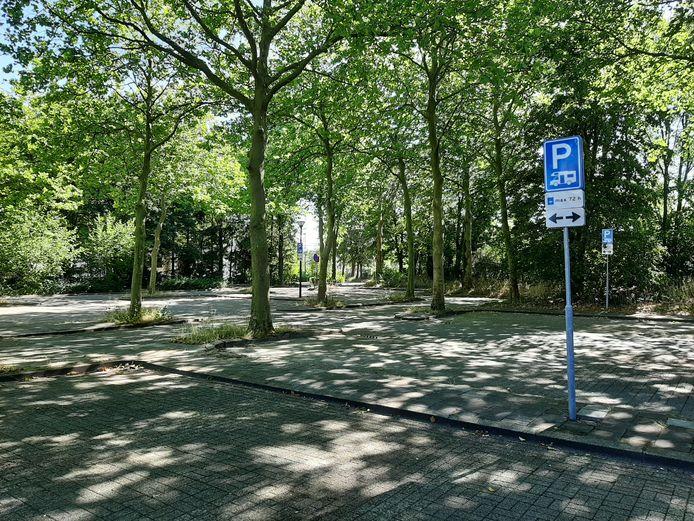 Hoewel het er idyllisch uitziet, wordt de camperplek in het centrum van Apeldoorn als onveilig ervaren.