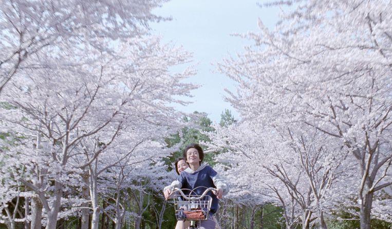 Beeld uit 'Our Little Sister' van Hirokazu Kore-eda. Beeld