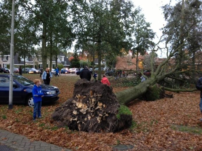 Tilburg Reeshof Langendijk 8.30 uur