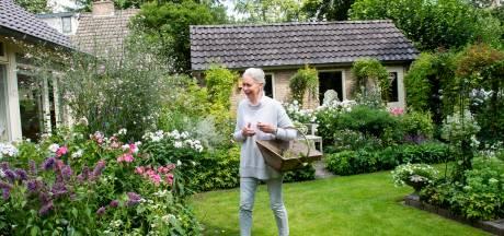 Het buitenland ontdekt deze 'geheime' tuin in Apeldoorn: 'Eigenlijk heb ik alleen in december een vrije tuinmaand'