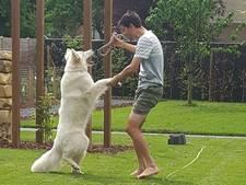 Dumoulin dolt met hond in tuin: Back to normal life