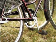 Zeeuwse fietsverhuurders slaan handen ineen