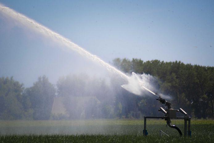 Provincie en waterschappen moeten samen paal en perk stellen aan grondwatergebruik om de natuur te beschermen.
