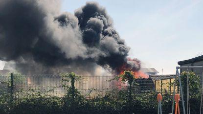 Felle brand legt tuinhuis in de as