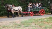 Trekpaardenliefhebbers toeren hele weekend door Nijlen