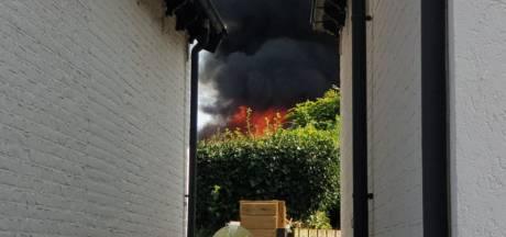 Flinke brand in Enschede: coniferen vliegen in de fik