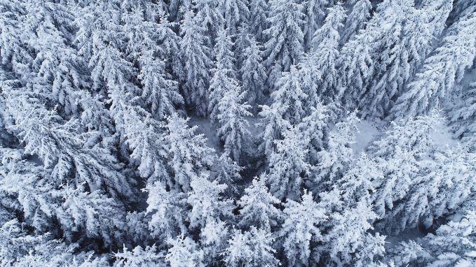 Prachtig: vlieg mee boven besneeuwde Ardennen