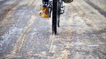 Oppositie bezorgd over gladde fietspaden in Zeger Malfaitstraat