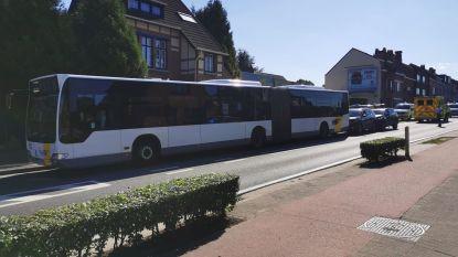 Mini kettingbotsing op Vilvoordsesteenweg met bus