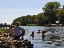 Wildzwemmers zoeken verfrissing aan Houtdok en Spanjeveerbrug
